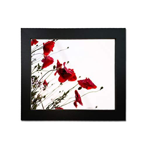 Tailored Frames Marco de fotos y marcos de fotos de tablero DM (acrílico, 50 x 40 cm), color negro