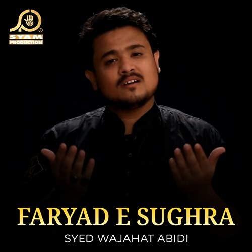 Syed Wajahat Abidi