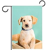 ガーデンヤードフラッグ両面 /28x40in/ ポリエステルウェルカムハウス旗バナー,ヒップスターゴールデンラボ子犬