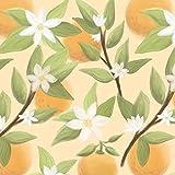 ORANGE wz.2 / Vanille, Softshell Classic, 140 cm breit