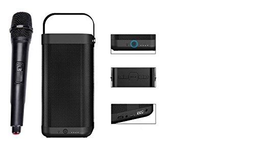 4D Sardine A9 Karaoke System Wireless Bluetooth Speaker with Mic (Black)