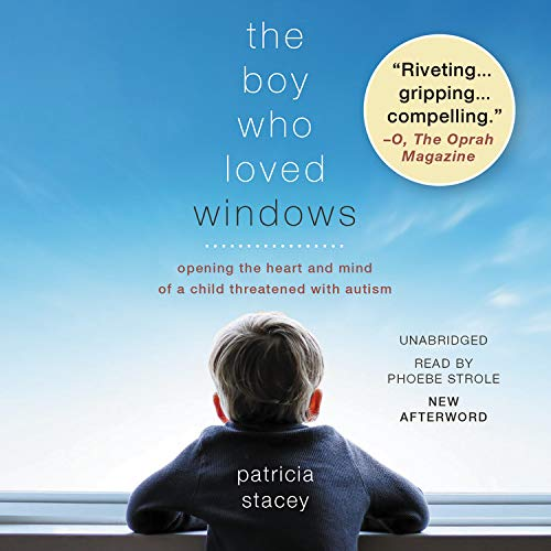 The Boy Who Loved Windows Audiobook By Patricia Stacey cover art