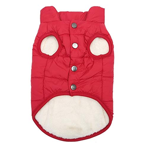 Tuzi Qiuge Winter Haustier Mantel Kleidung for Hunde Winter Kleidung warme Hund Kleidung, größe: XXL (Color : Red)