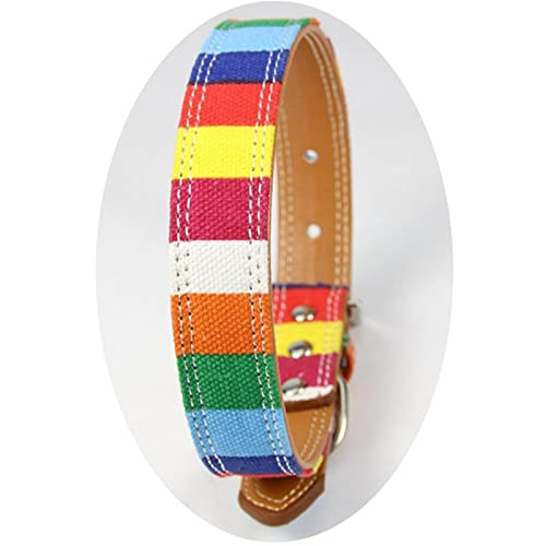WWPP Collar De Perro De Rayas Coloridas Collar De Collares De Mascota De Cachorro De Perro con Hebilla Ajustable Exquisito