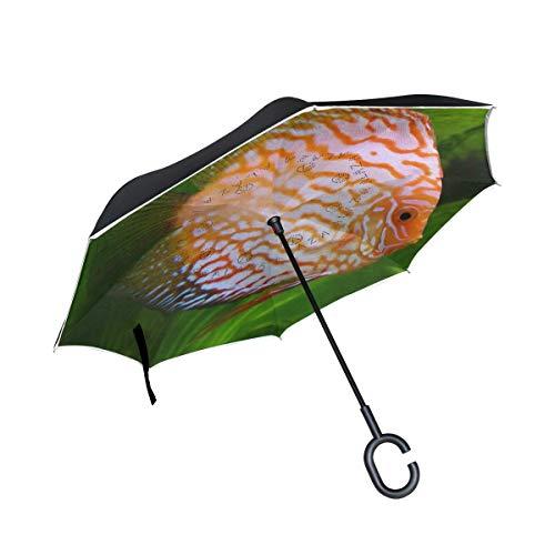 ETGeed Paraguas invertido Paraguas inverso de Peces de Agua Dulce