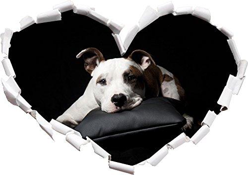 Forme de Coeur foncé Doux American Staffordshire dans Le Regard 3D, Mur ou Un Autocollant de Porte Format: 62x43.5cm, Stickers muraux, Stickers muraux, Décoration Murale