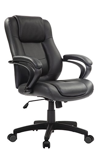 Eurotech Pembroke Mid Leather Executive Adjustable Office Desk Chair with Lumbar Support, Synchro-Tilt, Tilt Lock, and Adjustable Seat and Arms, Black