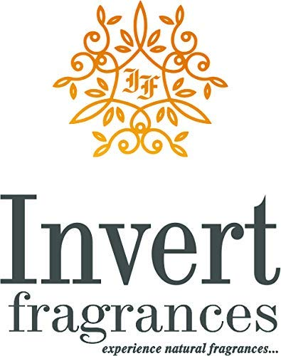 Invert Fragrances Sphere Ceramic Electric Aroma Diffuser Natural Air Freshener for Home, Office