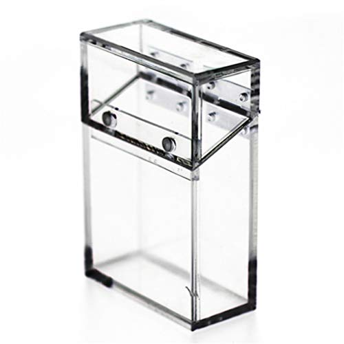 ZYYXB Étui de boîte à Cigarettes en Plastique Acrylique Clair Flip Top Cigarette Box Transparent Cigarette Display Box Packaging Storage Box