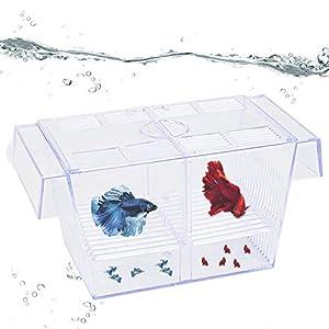 Uniclife Fish Breeding Box Tank Hatchery Incubator Aquarium Isolation Box for Baby Shrimp Guppy – Medium