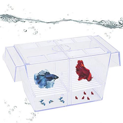 Uniclife Fischzucht Box Tank Hatchery Inkubator Aquarium Isolation Box für Baby Shrimp Guppy - Medium