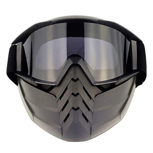 CXMY Gafas de Sol Gafas de Cara Retro Gafas de Cara Completa Retro Gafas de Motocross Viento y Polvo protección para los Ojos (Size : D)