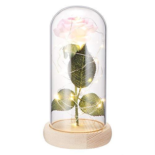TTAototech romantische schoonheid en lamp, roze, betoverd in een koepel van glas met basis van licht grenenhout, decoratieve geschenken voor bruiloften, feesten, lantaarn roze wit Medium White Pink Rose Light