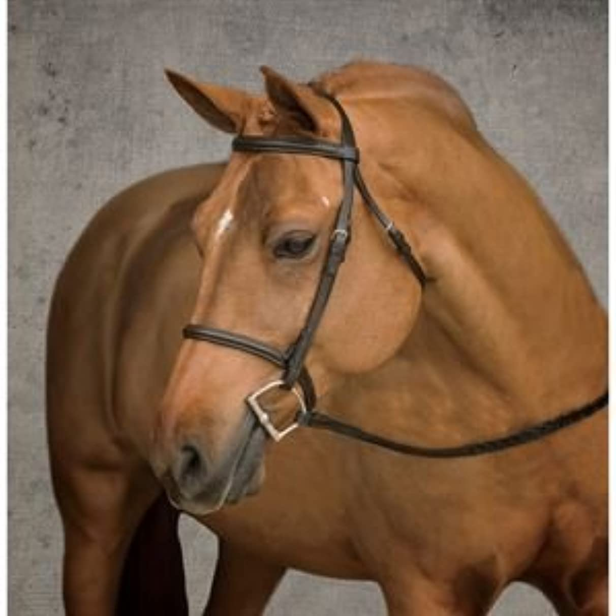 Suffolk by Dover Saddlery Pony Bridle - Brown, Pony-P/S