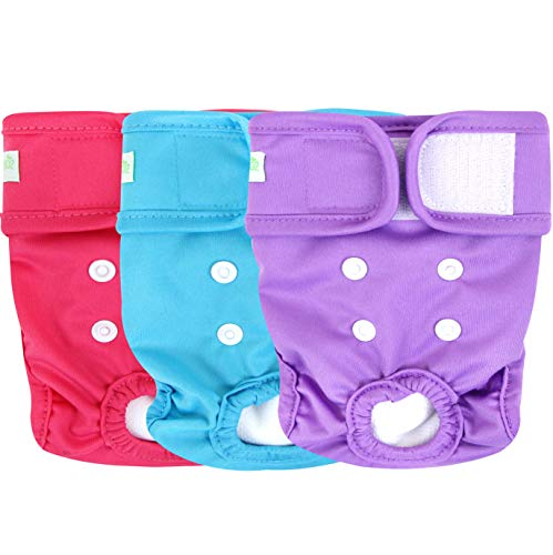 Dog Pee Diapers Female