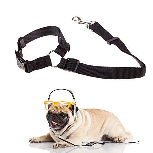 Sforza Hunde Sicherheitsgurt für Hunde im Auto Hundezubehör, Multifunktions Anschnallgurt für Hunde und Hundeleine, Schwarz 2PCS