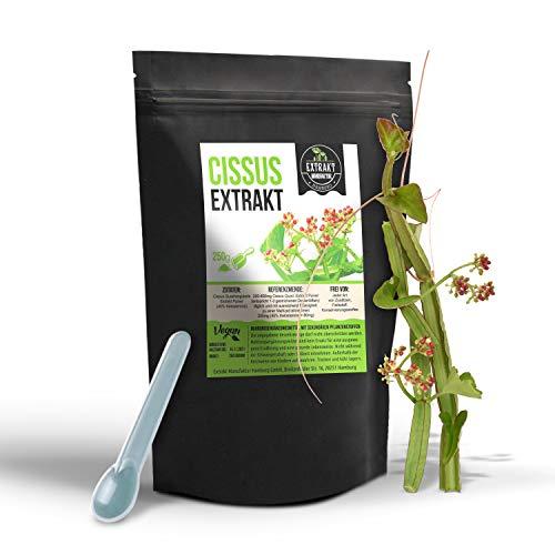 Cissus Quadrangularis Extrakt 250g PULVER 40 Prozent Ketosterone ohne Zusätze (250g)