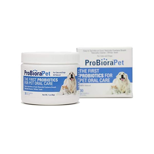ProBioraPet Oral Probiotics for Pets | Support Healthy Teeth and Gums | Freshen Breath | Whiten Teeth | 30 Day Supply (30g)