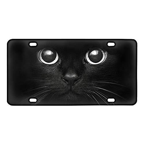 Coloranimal Galaxy Wolf - Placa de matrícula para coche, metal, Gato Negro, talla única