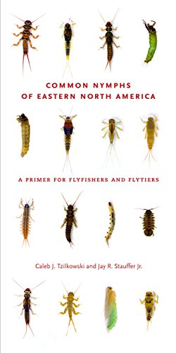 Common Nymphs of Eastern North America: A Primer for Flyfishers and Flytiers (Keystone Books) (English Edition)