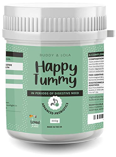Buddy & Lola Happy Tummy Dog Probiotic - Daily Digestive Support with Probiotics, Prebiotics, Enzymes, Fibre, Amino Acid. Helps Digestive Disorders and Loose Stools in Dogs and Cats (300g)