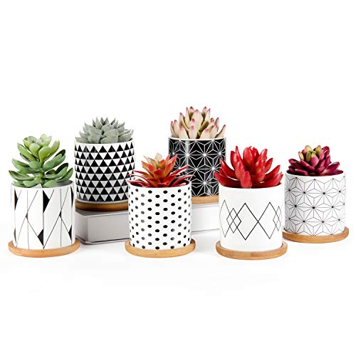 Succulent Pots 6 Pack, Laerjin 3 Inch Succulent Planters with Drainage and Bamboo Tray, Geometric Patterns Ceramic Small Pots for Baby Plants, Cactus, Herbs- Plants Not Included