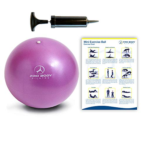 Mini Exercise Ball with Pump - 9...