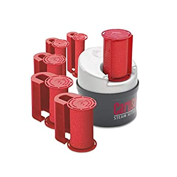 Caruso ProTraveler Molecular Steam Hairsetter 14 Rollers 5 Sizes