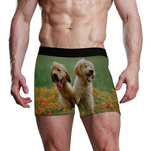 Calzoncillos tipo bóxer para hombre, ropa interior deportiva, cómodo, sexy, pantalones cortos para hombre, elástico, regalos para dos cachorros