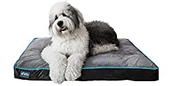 First Quality Thick Ortho Dog Bed - Best Rated Orthopedic Dog Beds