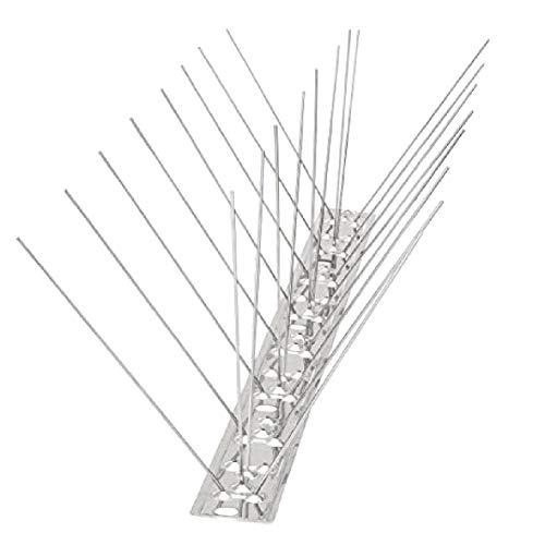coil.c Pinchos antipalomas de acero inoxidable, 50 cm, para paredes de vallas, la mejor protección contra pájaros para mantener alejados a todos los pájaros