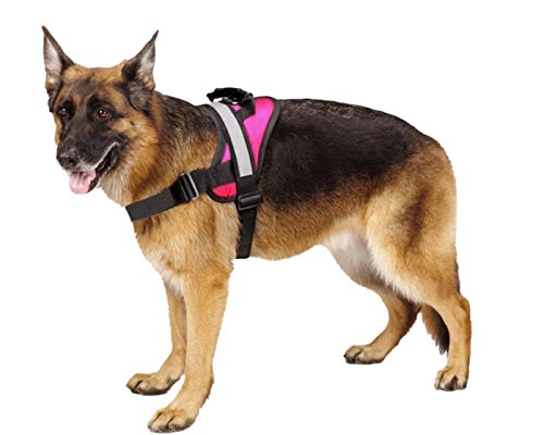 EXPAWLORER Big Dog Soft Reflective No Pull Pink Harness Size L 26-36inch