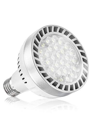 Broadroad Led Pool Light Bulb 120V 65W Daylight White 6000K Swimming Pool 6000LM E26 Pool Light Bulb Replacement for Most Pentair Hayward Light Fixtures (Pool Light 65W)