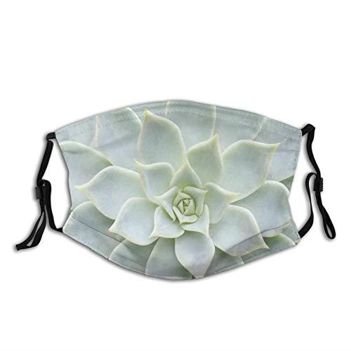 Modische wiederverwendbare waschbare atmungsaktive Gesichtsabdeckung, Unisex, für Motorrad, Fahrrad, Laufen und Outdoor-Sport, mit zwei Filtern, Kaktuspflanze, Blume, Nahansicht