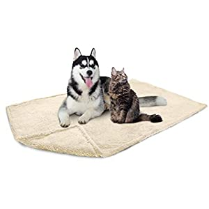 PetAmi Fluffy Waterproof Dog Blanket Fleece | Soft Warm Pet Fleece Throw for Large Dogs and Cats | Fuzzy Plush Sherpa Throw Furniture Protector Sofa Couch Bed (Beige Cream, 60×80)