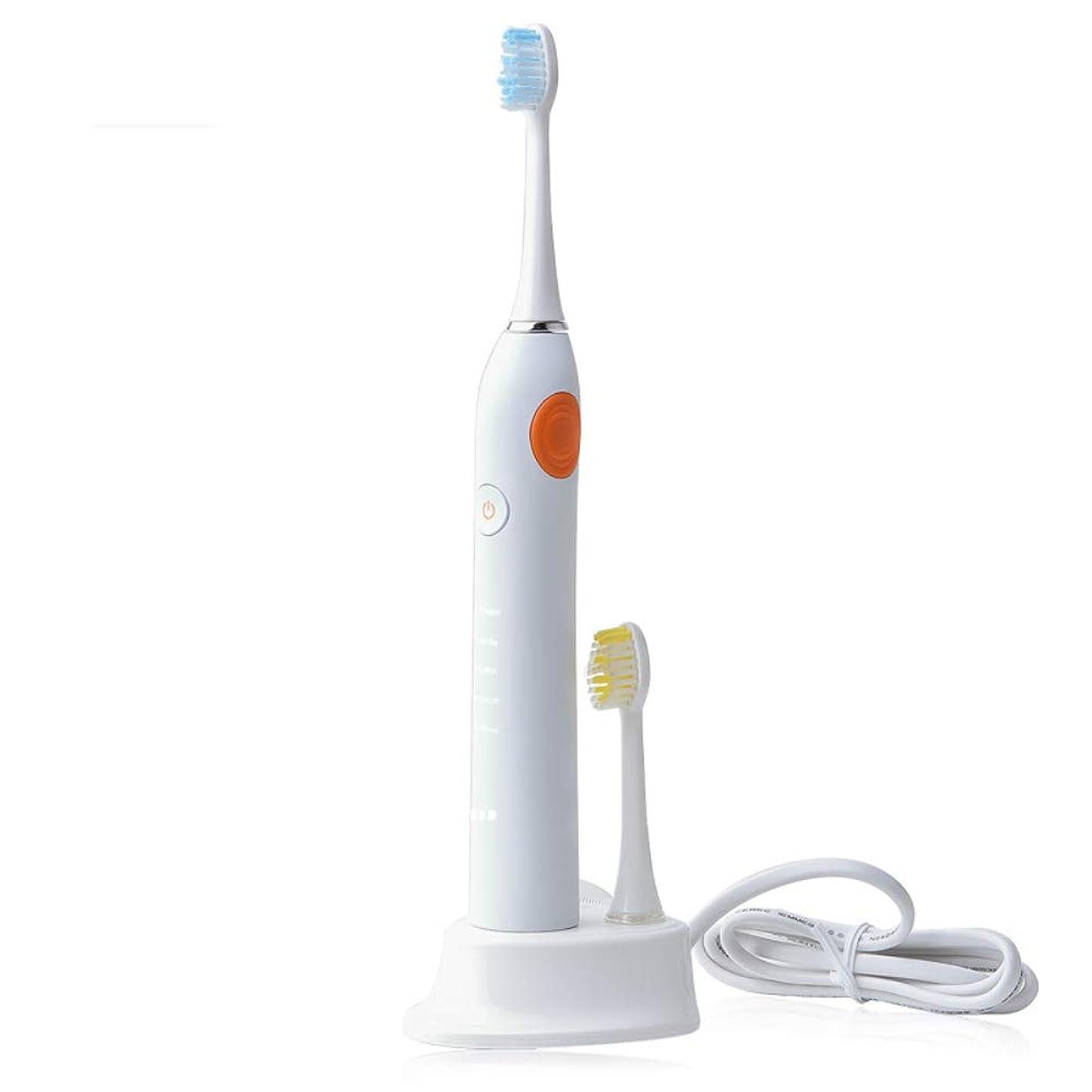 性差別キルト私たちのもの電動歯ブラシ、ソニック電動歯ブラシ、ソニックファーフルボディ防水超静かな電動歯ブラシは、家庭旅行に適しています