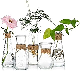 Glass Vases Set of 5, Clear Glass Flower Vase with Rope Design and Differing Unique Shapes for Home Decoration Wedding Rec...