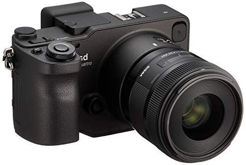 """SIGMA ZL900 - Kit de Cámara Evil de 39 MP (Pantalla de 3"""", F1.4,) + Sigma 30 mm F1.4 DC HSM Art, Color Negro"""