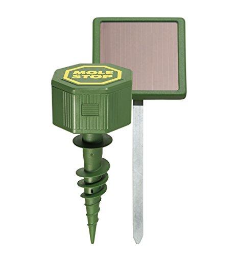 Preisvergleich Produktbild Windhager Wühlmausvertreiber MOLE Stop SOLAR,  Wühlmausabwehr,  Maulwurfvertreiber,  Maulwurfabwehr,  Wühlmausschreck,  Wirkungsbereich ca. 1000m²,  02125,  Grün,  Reichweite