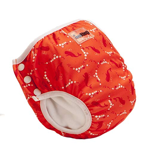 Bambinex Baby Bambinex 2er SPARPACK ** 2in1 Swim n Train ** Schwimmwindel + TrainerPant in Einem ! (Small (8-11kg), Bubble)