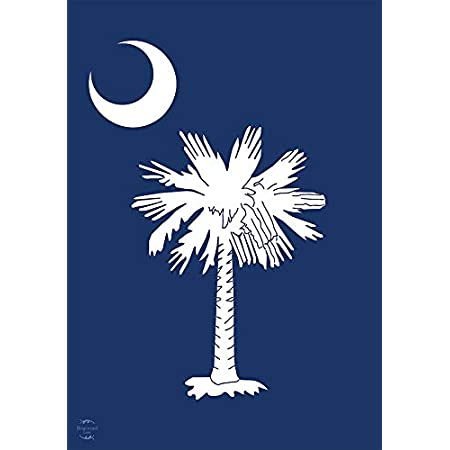 .925 South Carolina State Flag Pendant Sterling Silver \u2022 Palm and Moon Pendant \u2022 Palmetto \u2022 SC State Flag \u2022 Charleston SC ~ EXCLUSIVE ~