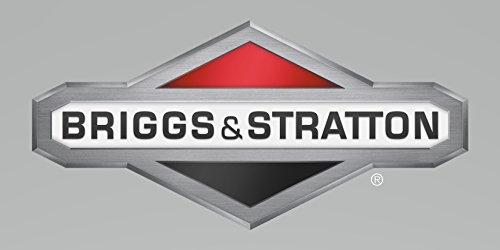 Tube-Breathe Genuine Original Equipment Manufacturer (OEM) Part - Briggs & Stratton 596501