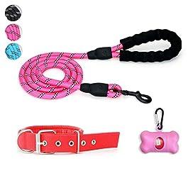 ZuiJia Pet supplies-Lead-Harness-Collar