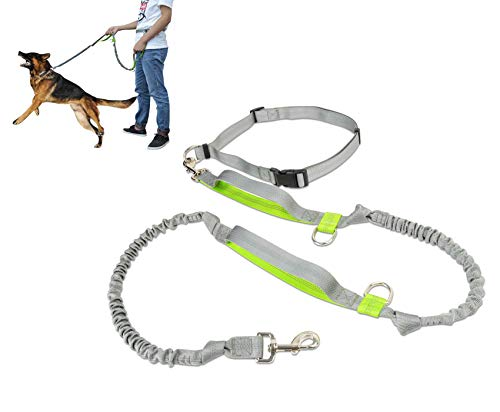 WMHourse Hands Free Dog Leash-Dual-Handle Bungee Reflective Stitching Shock Absorbing Waist Belt, Durable Stylish Leash for Dogs up to 150lb