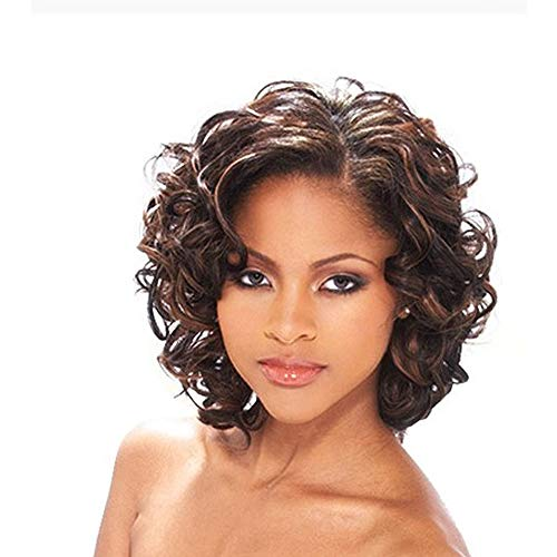 YIMANEILI Brown Wigs for Women Short Wavy Curly Wig Heat Resistant Synthetic Full Wigs for Black Women Natural Daily Party Hair Wig with Wig Cap (Brown) YM012