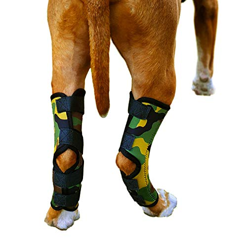 Dog Rear Leg Brace - Pair of Braces for Back Leg - Hock Ankle Support for Hind Legs - Ideal for Dogs...
