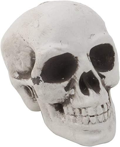 Mini plastica Cranio, modello Decor Prop capo di scheletro di Halloween Coffee Bar Ornament DOISLL