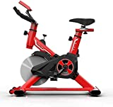 HAOSHUAI Bicicleta estática, peso de carga de 100 kg, para interiores, para pérdida de peso, equipo de fitness, culturismo, color rojo