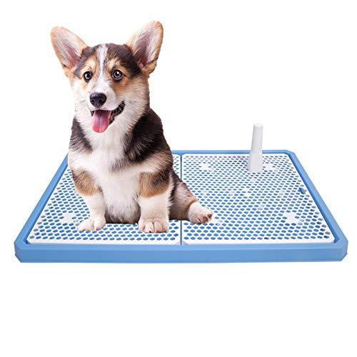 RTVZ binnen en buiten hond toilet lade Potty huisdier training lade pad wc urinoir met urinoir kolom - geschikt voor honden, katten, andere huisdieren