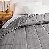 Welhome Alexander 100% Cotton Sateen Woven Stripe Oversize Quilt |...